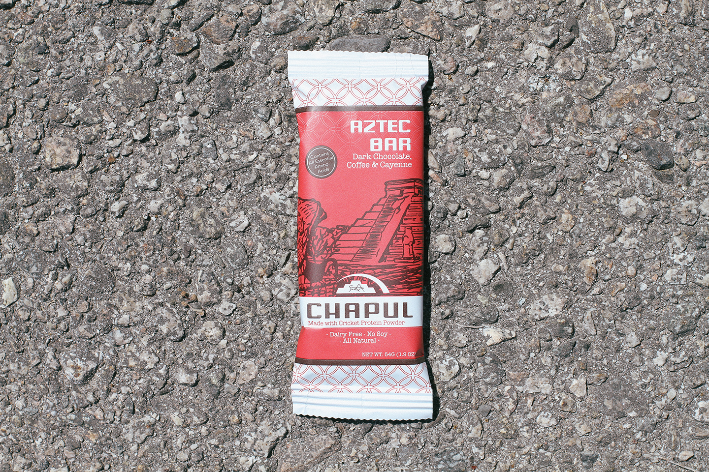 Cricket Flour Protein Bar Review: Chapul Aztec