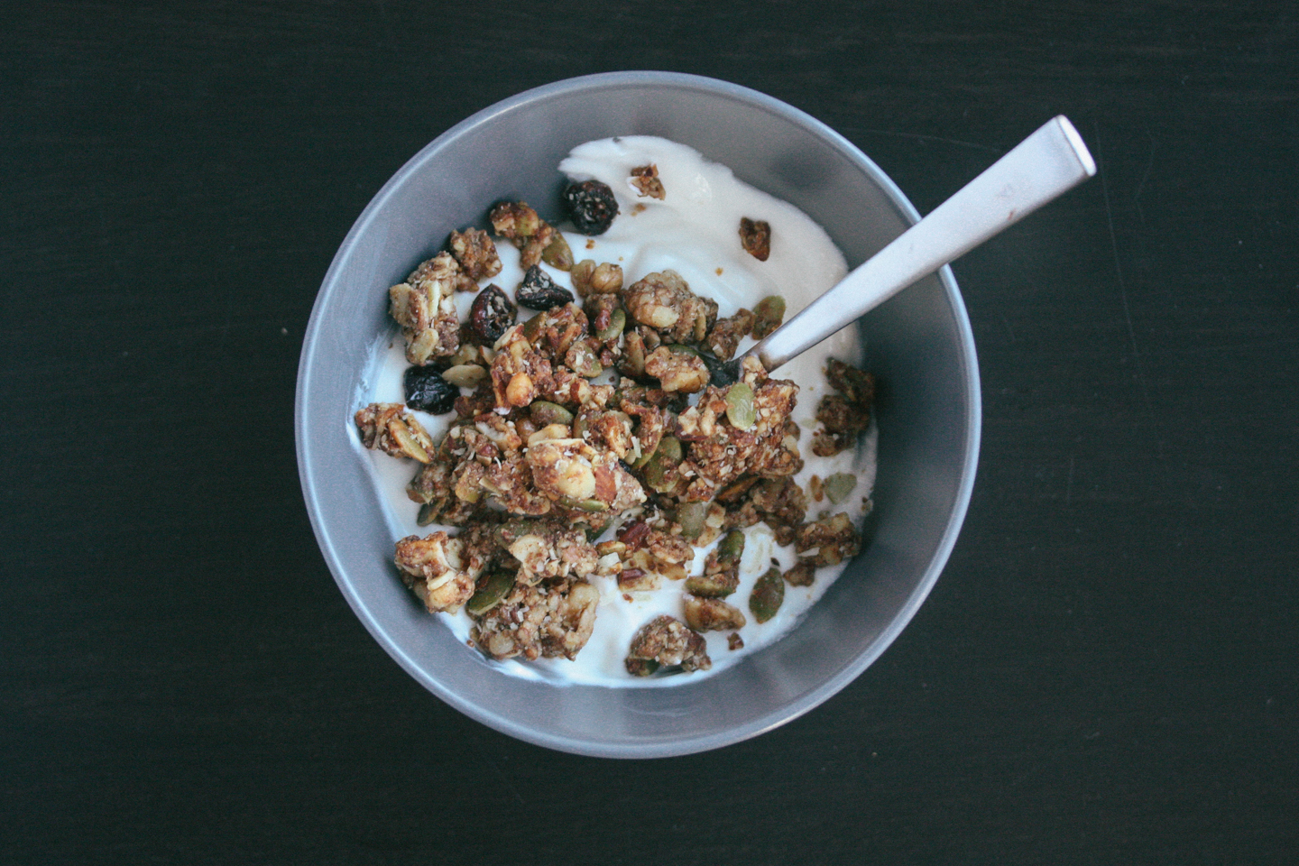 Paleonola: Grain Free Granola Review