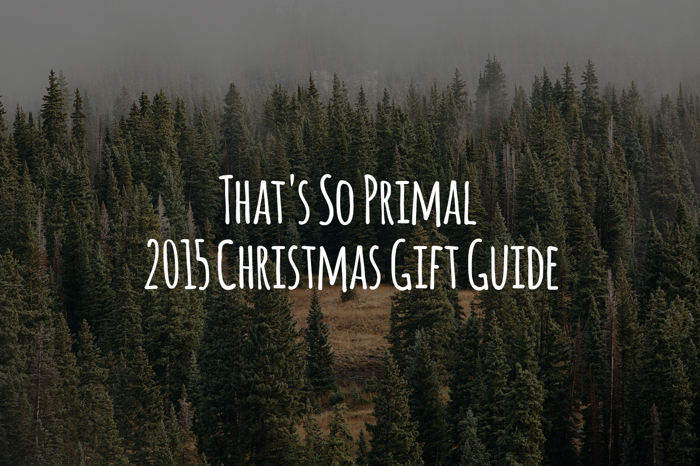 That's So Primal 2015 Christmas Gift Guide