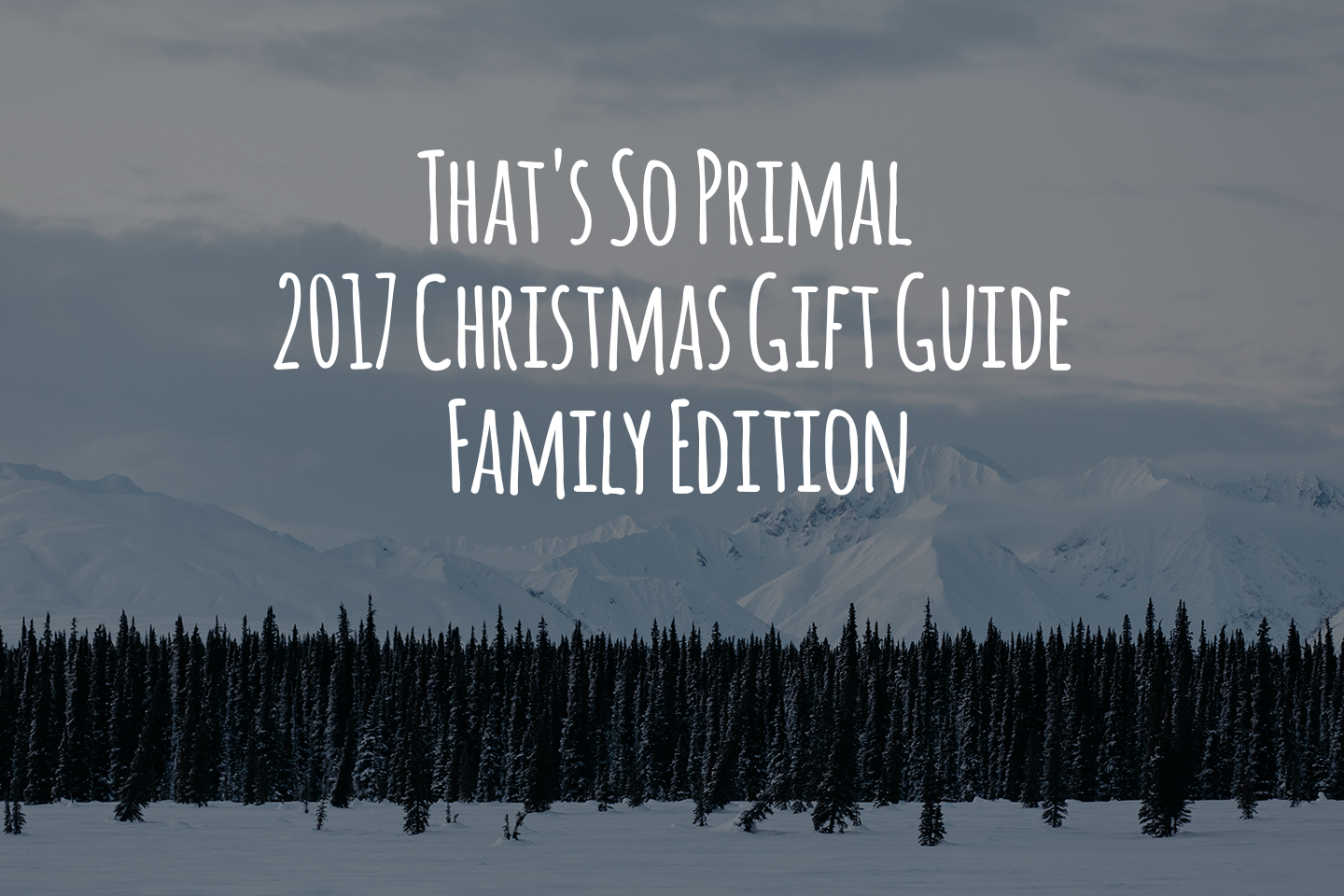 That's So Primal 2017 Christmas Gift Guide - Family Edition