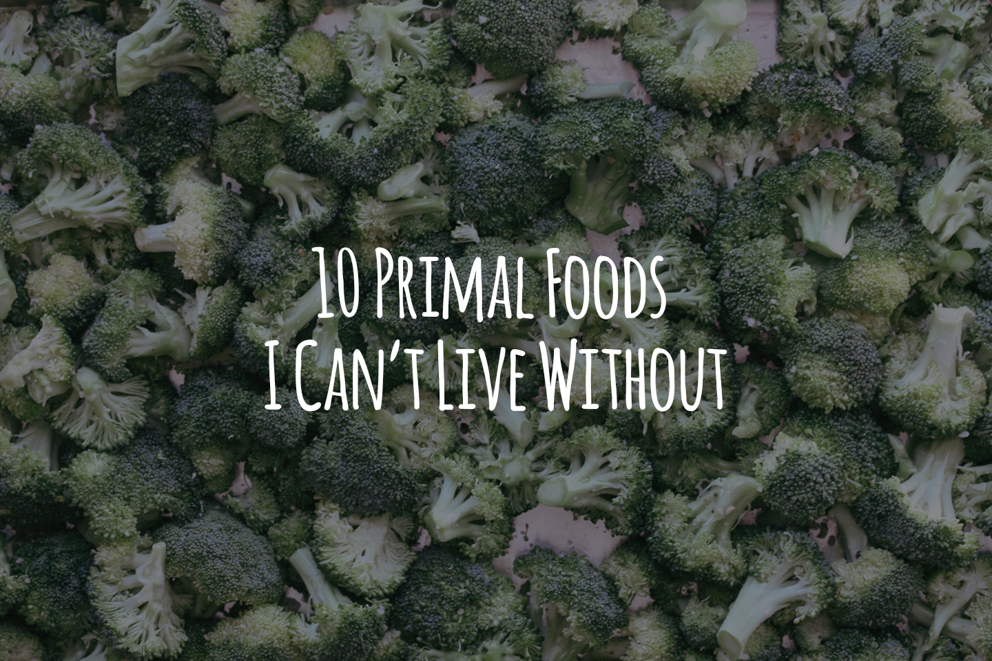 10 Primal Foods I Can't Live Without Header